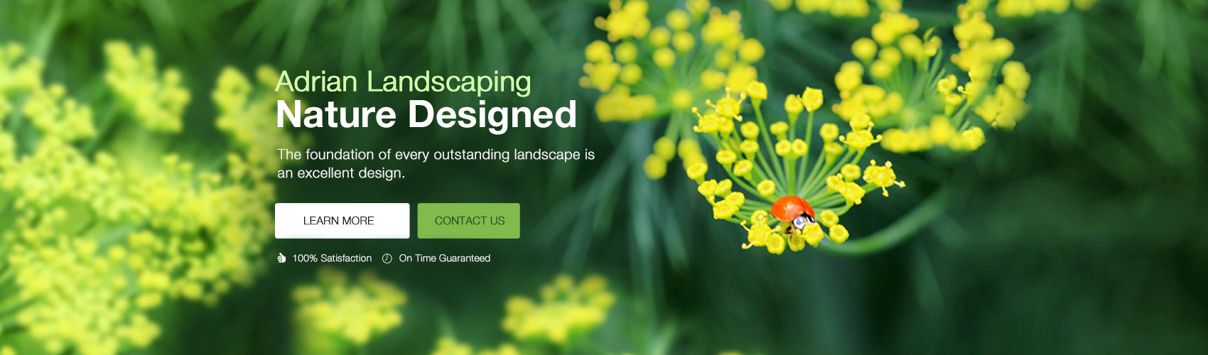 Adrian Landscaping South Florida